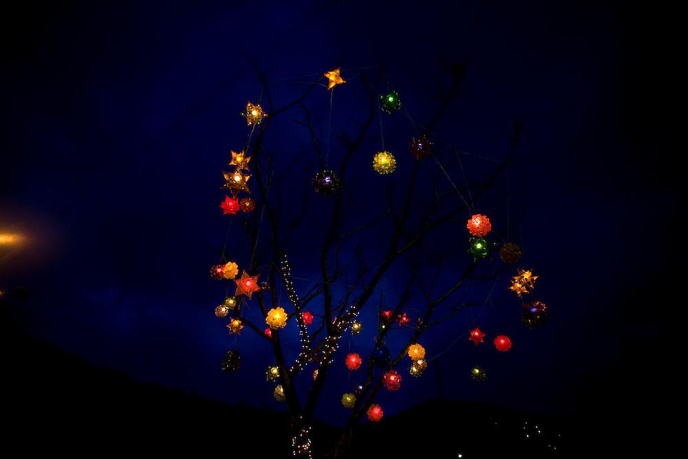 Senhora do Porto_MG, Brasil...Arvore de natal a noite em Senhora do Porto...The Christmas Tree at night in Senhora do Porto...Foto: LEO DRUMOND /  NITRO