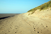 Beach sediment at the tip of Spurn Head spit, Yorkshire, England