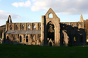 UK, Wales, The Wye Valley, monmouthshire, Tintern Abbey
