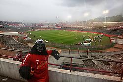 Torcedor caracterizado de macaco, (símbolo da torcida colorada) durante a partida entre Inter e Fluminense, válida pela 23 rodada do Campeonato Brasileiro 2012. FOTO: Jefferson Bernardes/Preview.com