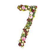 The number Seven Part of a set of letters, Numbers and symbols of the Alphabet made with flowers, branches and leaves on white background