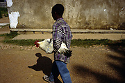 """A boy carries a chicken under his arm<br /> He now lives at the orphanage and home called Shalom House founded by Marguerite Barankitse (known as the 'Angel of Burundi') in 1994. During the genocide, Barankitse, at great personal risk, managed to save 25 orphans, Hutu, Tutsi and Twa and built a home for them. Currently, she has helped more than 10,000 orphans and separated children who can grow up in an """"extended adopted family"""" in security, education and love."""