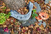 Garden seal sculpture and amanita mushrooms, November, domestic garden, Tacoma, WA, USA
