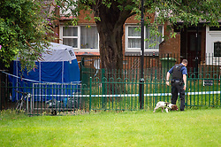 © Licensed to London News Pictures. 04/07/2020. London, UK. A dog handler looks on as a police dog searches for evidence in a grassed area next to a forensic tent on Westbourne Estate in Islington. Metropolitan Police Service officers were called at 15:20BST on Saturday, 4 July to Roman Way N7 following reports of shots fired. Officers attended with London Ambulance Service (LAS) and found a man, believed to be aged in his early 20s, suffering from gunshot injuries. Despite their best efforts, he was pronounced dead at the scene. Photo credit: Peter Manning/LNP