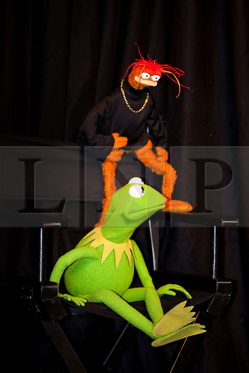 © Licensed to London News Pictures. 13/06/2012. LONDON, UK. Kermit the Frog and Pepe the King Prawn appear at the HMV store on Oxford Street, London, to promote the release of The Muppets on Blu-Ray and DVD. Photo credit: Matt Cetti-Roberts/LNP
