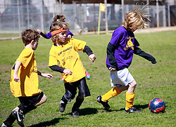16 February 2013. New Orleans, Louisiana,  USA. .Carrolton Boosters Soccer. Under 10's. The Road Runners play the Sharks. .Photo; Charlie Varley.