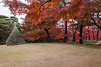 Tree wrapping has been practiced for thousands of years in Japan, where it has been elevated to a kind of art form.  Although in Japanese gardens and parks it is a protective measure to protect trees in winter,  it derives from the Japanese Shinto tradition consisting of wrapping the trunks of specially honored trees with a braided and twisted rope called a 'shimenawa'.