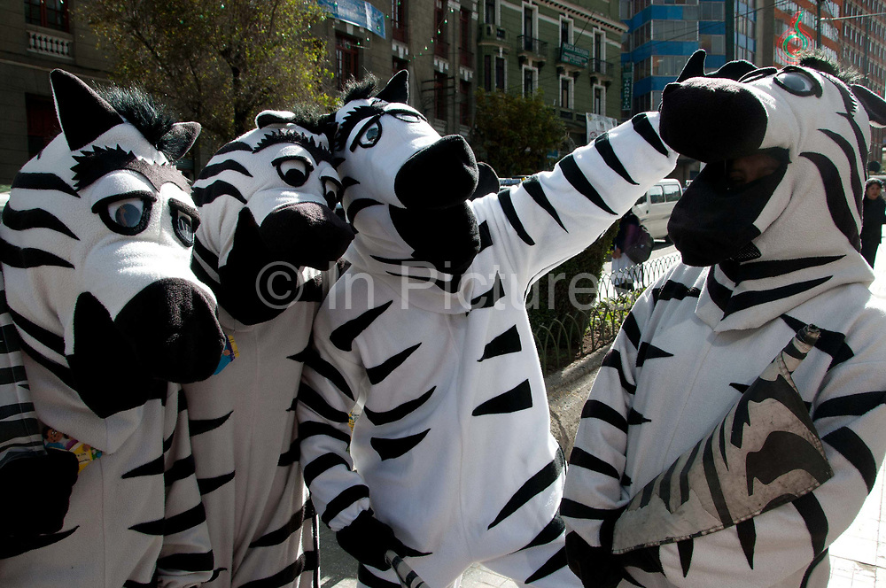 Bolivia, La Paz 2013. Young people dressed as zebras help control the traffic during the afternoon rush hour (3 pm - 6pm) enabling people to use the zebra crossings - here they are about to begin their shift. The scheme has been running since 2001 and gives a job and income to disadvantaged youth.