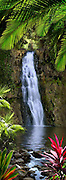 Special Photo-Art giclee - Jungle Waterfall
