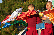 New Lungtas (prayer flags) printed with mantras are hung on the occasion of Losar (Tibetan new year) - Karma Drubgyu Thargay Ling, near Dharamsala, India, 2013