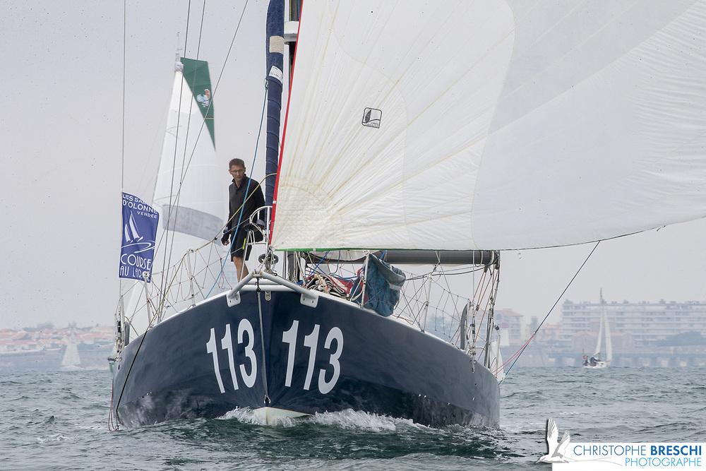 113  Des voiles et Martin / LOUCHART Martin - DUCHEMIN Frédérique