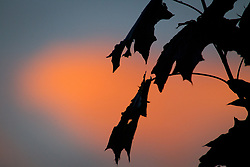 May 28, 2017 - Bydgoszcz, Poland - The sky is seen during the setting sun on a warm day in Central Europe on 28 May, 2017. (Credit Image: © Jaap Arriens/NurPhoto via ZUMA Press)