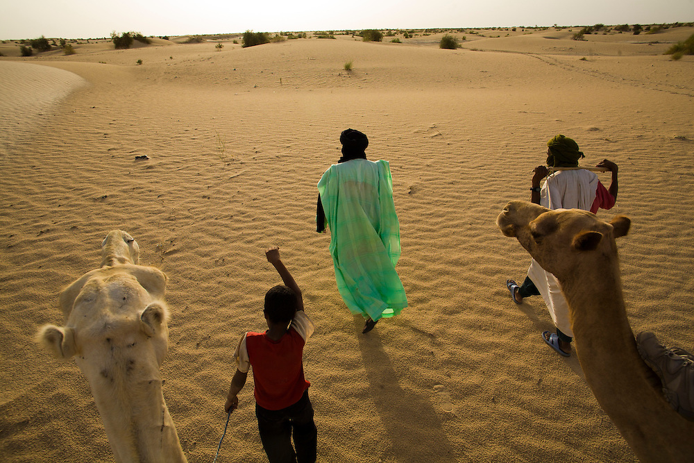 Men and boy with camels in the desert around Timbuktu, in Mali.