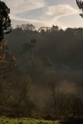 Early morning mist at Roslin Glen adjacent Rosslyn Chapel on the 10th November 2018 in the village of Roslin, Scotland in the United Kingdom.