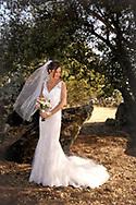 Becky and Mark wedding