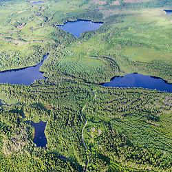 Durgin Pond (middle right), Little Berry Pond (middle left), Big Berry Pond (top), and Snake Pond (top right) in the Cold Stream watershed in industrial timberland in Maine's Northern Forest.