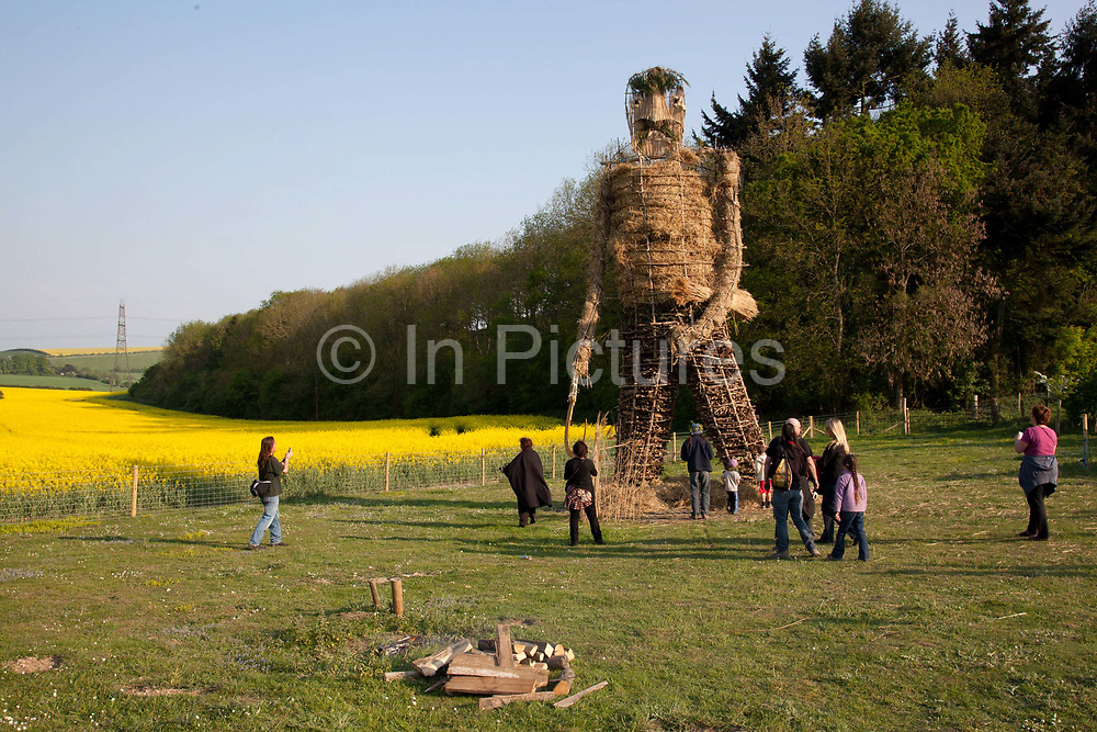 Large straw wickerman ready for burning. The annual Beltane celebrations at Butser ancient farm, Hampshire, marking the beginning of the British summer.
