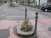 """Mill Ends Park: World's Smallest Park<br /> <br /> Mill Ends Park in Portland, the United States, is only two feet in diameter and is really just a flower pot, but don't say that aloud, especially in front of Portlandians. Since the last 40-odd years, the locals have been celebrating this tiny hole of earth as the world's smallest park, and they have a certificate from the Guinness Book of Records to prove.<br /> The site that would become the Mill Ends Park was originally scheduled for a light pole. When the pole failed to appear and weeds sprouted in the opening, Dick Fagan, a columnist for the Oregon Journal, decided to take matters into his own hands and planted flowers in the hole. Fagan's office in the Journal building overlooked the median in the middle of the busy thoroughfare that ran in front of the building. Fagan wrote a popular column called Mill Ends (the rough, irregular pieces of lumber left over at lumber mills), and he started using this column to describe the park and the various """"events"""" that occurred there. It was Fagan who started calling the space as the """"World's Smallest Park."""" The park was dedicated, two years later, on St. Patrick's Day in 1948.<br /> Fagan continued to write whimsical stories about the park and the lives of its alleged residents – fairies called leprechaun, that he claimed only he can see. He told a story about how he looked out the window and spotted a leprechaun digging in the hole. He ran down and grabbed the leprechaun, which meant that he had earned a wish. Fagan wished for a park of his own, but since he had not specified the size of the park in his wish, the leprechaun gave him the hole. Fagan even named the head leprechaun, Patrick O'Toole.<br /> Fagan died of cancer in 1969, but the park lives on, cared for by others. Mill Ends officially became a city park on St. Patrick's Day in 1976, and the park continues to be the site of St. Patrick's Day festivities.<br /> Over the years, contributions have been made to the"""