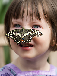 © Licensed to London News Pictures. 31/03/2015. London, UK. Georgia Ball-Keely (aged 4) with a butterfly on her face at the Sensational Butterflies exhibition at the Natural History Museum in London. The Sensational butterflies exhibition runs at the Natural History Museum in London from 2 April 2015 to 13 September 2015. Photo credit : Vickie Flores/LNP