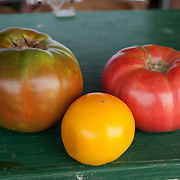 Heirloom tomatoes grown at Verrill Farm in Concord, MA, USA