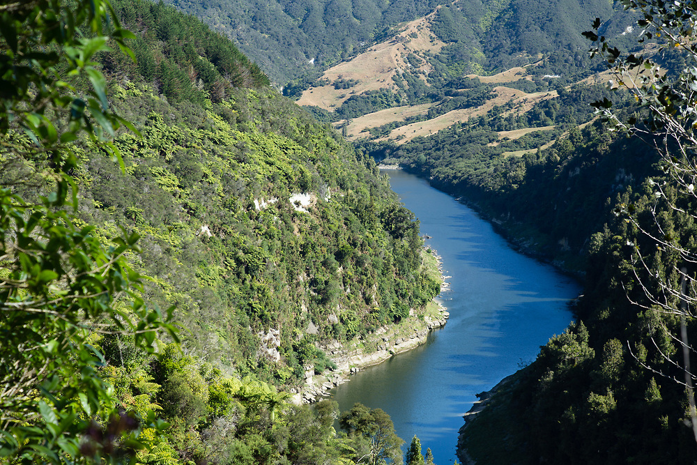 High view looking down onto the Whanganui River gorge on clear blue sunny day, showing lush native forest and clean water.