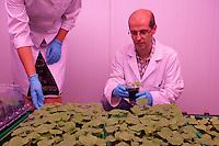 01-02/Septiembre/2016 Navarra. Pamplona.<br /> Instituto de Agrobiotecnología, IDAB, del CSIC en Pamplona.<br /> <br /> © JOAN COSTA