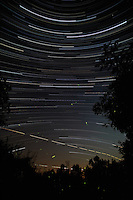Star, Jet, and Firefly Trails. Summer Night in New Jersey. Image taken with a Nikon D3x and 14 mm f/2.8D lens (ISO 200, 14 mm, f/4, 8 sec). Composite of 980 images combined using the Startrails program.