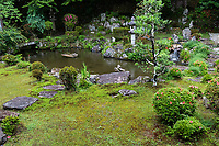 """Saikyoji Hyakuden Teien Garden  - altogether there are four distinct gardens surrounding the temple's main hall.  The most famous one is the Hyakuden Teien pond garden designed by Kobori Enshu during the Ido Period,  The pond is supposed to represent Lake Biwa nearby (others contend that the pond is in the shape of a rose)  with its backdrop slope punctuated with stones and satsuki bushes.  Adjacent to the pond is a sukiya style teahouse, an addition added during the Meiji Period that is almost never open to the public.   The second garden is called Dai Honbo Teien - its style is quite different from the Hyakuden Garden as it is composed of bushes in the tsukiyama style - its unique feature is of stepping stones embedded in the white sand """"sea"""". The third garden is the Shoin Teien, which is a dry garden created during the Meiji Period, and is composed of Sakamoto style masonry and stones.  The fourth main garden is Yashoiun Teien or Back Shoin Garden which was created much more recently by Shigetaro Nishimura a local landscaper and is considered a pond appreciation garden."""