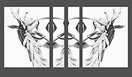 """For IMAGE LICENSING just click on the """"add to cart"""" button above or contact the artist.<br /> <br /> Fine Art archival paper prints for this image as well as canvas, metal and acrylic prints available here: <br /> <br /> <br /> To GET BACK TO LAGE IMAGE VIEWS:<br /> Click your browser back arrow until you get to the large view screen. <br /> OR click https://julieweberphoto.photoshelter.com/index<br /> which takes you to the home page. Then choose a gallery.  <br /> <br /> For FULL SCREEN VIEW, click on expand view double arrow icon"""