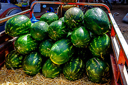 Watermeolns for sale in a fruit and vegetable market in Tagounite, Morocco<br /> <br /> (c) Andrew Wilson | Edinburgh Elite media