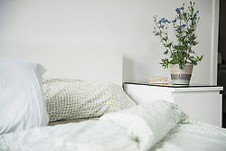 Close-up of pillows and blanket on bed
