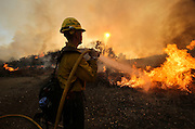 A firefighter battles the wildfire near Placenta Canyon Road in Santa Clarita, Calif., Sunday, July 24, 2016.(AP Photo/Ringo H.W. Chiu)