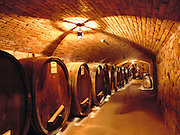 One of the many underground wine storage rooms of a castle being built in the Napa Valley  by winemaker Daryl Sattui California. Daryl Sattui's Castello di Amoroso, a version of a Tuscan hilltop castle in Calistoga, California. Under construction in 2003.  MODEL RELEASED.