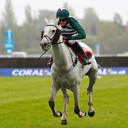 Grey Missile and Nick Scholfield winning the 4.20 race