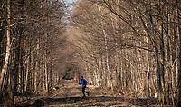 03.2015 Puszcza Bialowieska N/z biegacz na lesne drodze fot Michal Kosc / AGENCJA WSCHOD
