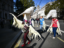 © Licensed to London News Pictures. 08/10/2019. London, UK. Extinction Rebellion activists dressed as birds perform on Whitehall, outside Downing Street. Activists have converged on Westminster for a second day, blockading roads in the area and calling on government departments to 'Tell the Truth' about what they are doing to tackle the Emergency. Photo credit: Ben Cawthra/LNP
