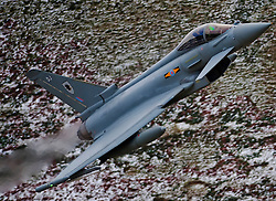 © under license to London News Pictures. 15/04/11 The RAF's most advanced fighter jets have been grounded owing to shortages of spare parts, MPs have found. FILE PICTURE DATED 01/03/10. The TYPHOON. Credit should read Andrew Chittock/LNP