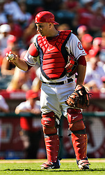 ANAHEIM, California/USA (Thursday, September 27, 2012) -  Los Angeles Angels catcher Chris Iannetta #17 plays during the Mariners vs Angels game held at the Angels  Stadium. The Angels lost 9-4. Byline and/or web usage link must read PHOTO © Eduardo E. Silva/SILVEX.PHOTOSHELTER.COM.