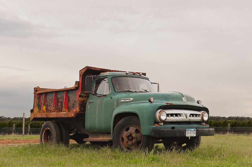 1953 Ford Truck<br /> Riverhead, Long Island