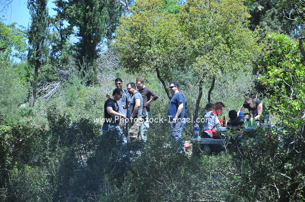 Group of friends at an outdoor picnic in a pine forest