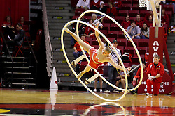 21 November 2009: A member of the Gamma Phi Circus performs her act on the big wheel at half time. The Ospreys of North Florida fall to the Redbirds of Illinois State 71-55 on Doug Collins Court inside Redbird Arena in Normal Illinois.