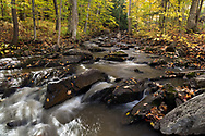Fall foliage along Fortune Creek.  Photographed during Fall Rhapsody at Gatineau Park in Gatineau, Québec, Canada.