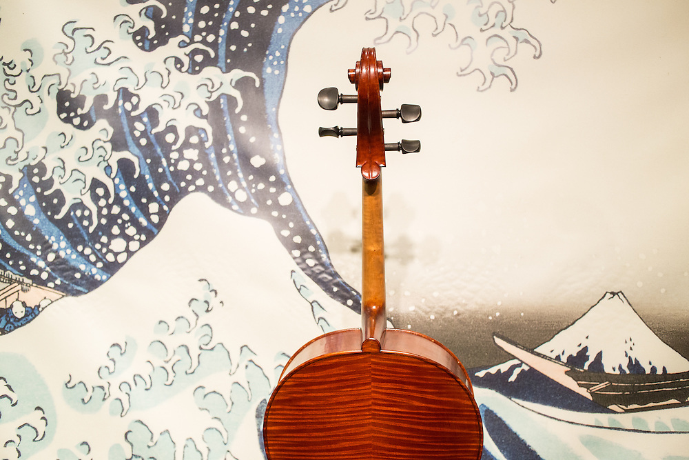 The bookmatched figured maple back of a cello from Chacoone Co, in Nagoya.