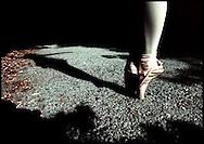 """Shadow Dancer"""