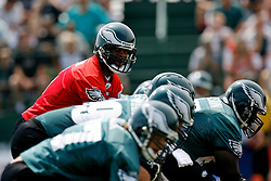 Bethlehem, PA - August 2nd 2008 - Quarterback Donovan McNabb looks over the line before a play  during the Philadelphia Eagles Training Camp at Lehigh University (Photo by Brian Garfinkel)