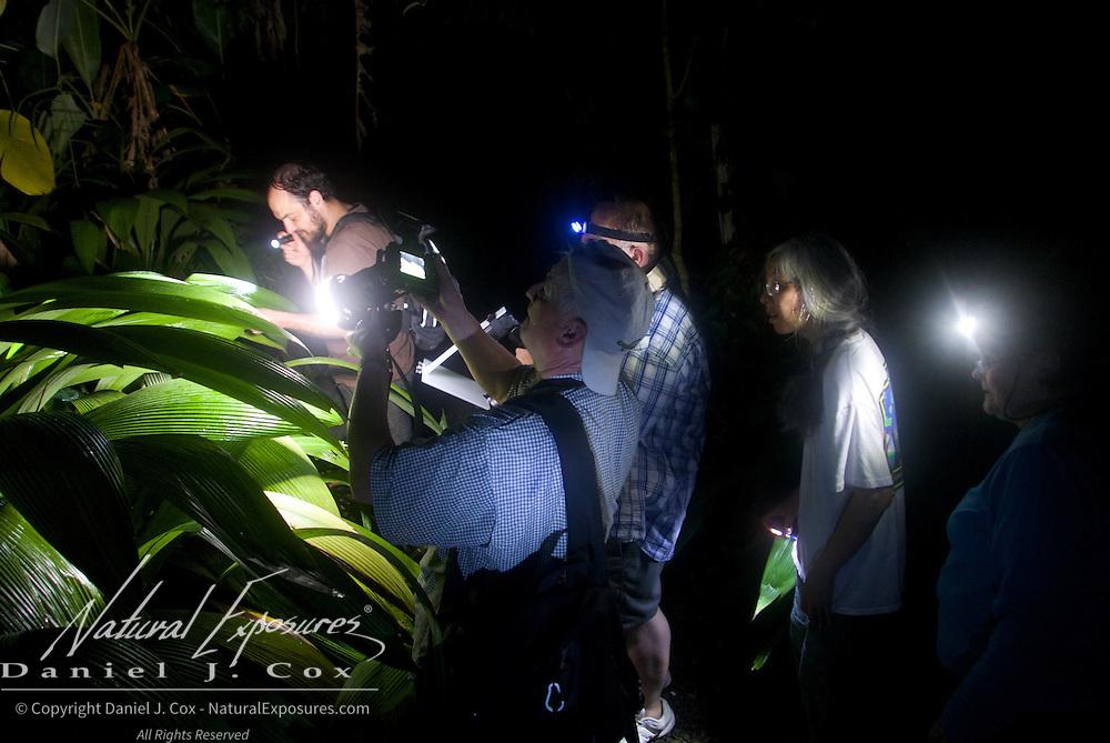 A night of macro photography. Costa Rica.