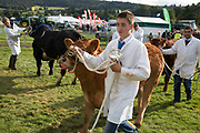 Dairy, beef and store cattle competition winners. 'Pateley Show', as the Nidderdale Show is affectionately known, is a traditional Dales agricultural show for the finest livestock, produce and crafts in the Yorkshire Dales. Held in the picturesque surrounds of Bewerley Park, Pateley Bridge, is one of the county's foremost shows. It regularly attracts crowds of 17,000 and traditionally marks the end of the agricultural show season.
