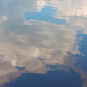 Cloud reflections on a lake in the summer.