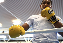 Anthony Joshua trains with gloves signed by Marco Antonio Barrera during the workout at the English Institute of Sport, Sheffield. PRESS ASSOCIATION Photo. Picture date: Wednesday March 21, 2018. See PA story BOXING Joshua. Photo credit should read: Mike Egerton/PA Wire