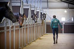 Van Lieren Laurens, (NED)<br /> Selevia Hoeve - Werkendam 2015<br /> © Hippo Foto - Dirk Caremans<br /> 18/11/15